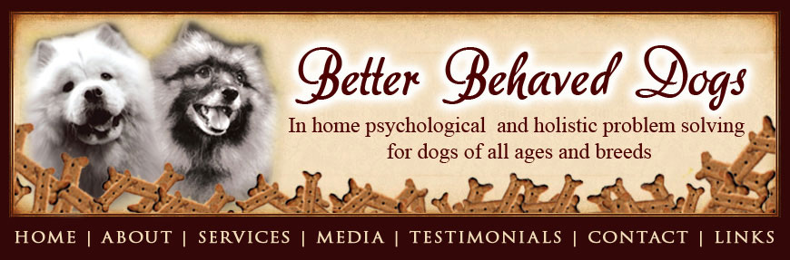 Better Behaved Dogs